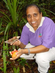 Information on bush tucker in the Daintree Rainforest