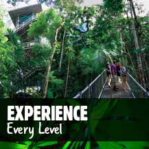 Daintree Rainforest Tours and Prices
