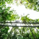 Walking on air! Our Aerial Walkway has been rated ashellip