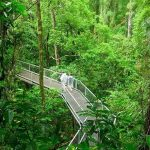 Great post from  imheadingnorth We couldnt agree more Daintreehellip