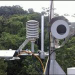 DAINTREE DISCOVERY CENTRE BACKS CRUCIAL RAINFOREST RESEARCH  The DaintreeDiscoveryCentrehellip